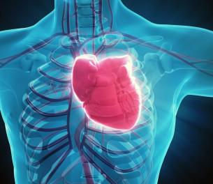 AIE™ Cardiolipin Probe